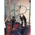 PE gymnastics