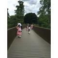 Kew Gardens June 2016