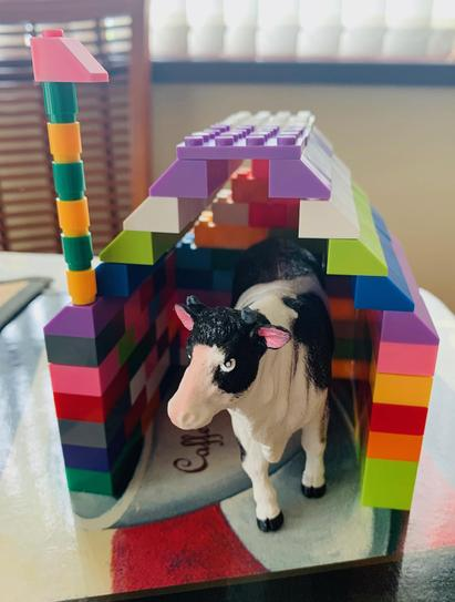 Animal Home by Cian