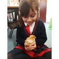 The chicks have come to visit Y1