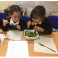 What was better - writing or eating salad?