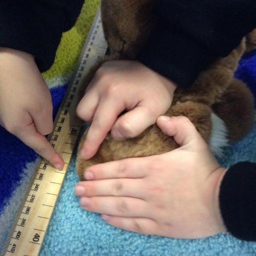 We are helping our friends to measure accurately.