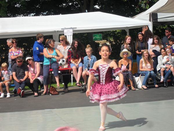 Performing at the Fair