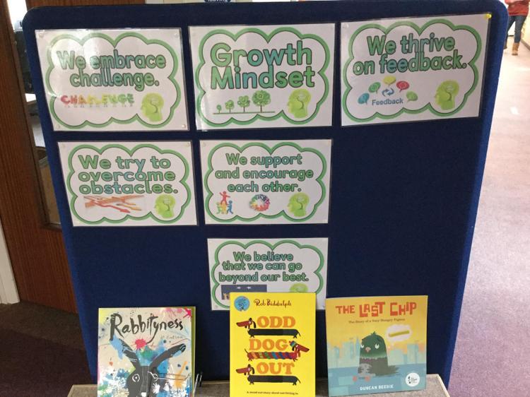 We promote growth mindsets