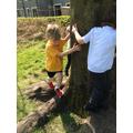 Exploring Climbing