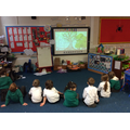 Learning about Trees with Picture News