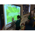 ICT - Forest Phonics