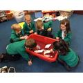 Exploring Floating & Sinking