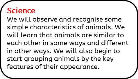 Science: We will observe and recognise some simple characteristics of animals. We will learn that animals are similar to each other in some ways and different in other ways. We will also begin to start grouping animals by the key features of their appearance.