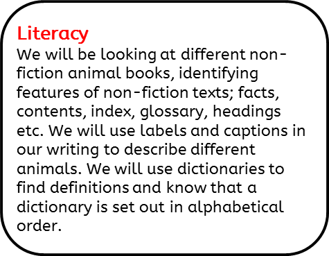 Literacy: We will be looking at different non-fiction animal books, identifying features of non-fiction texts; facts, contents, index, glossary, headings etc. We will use labels and captions in our writing to describe different animals. We will use dictionaries to find definitions and know that a dictionary is set out in alphabetical order.