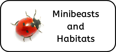 Minibeasts and Habitats