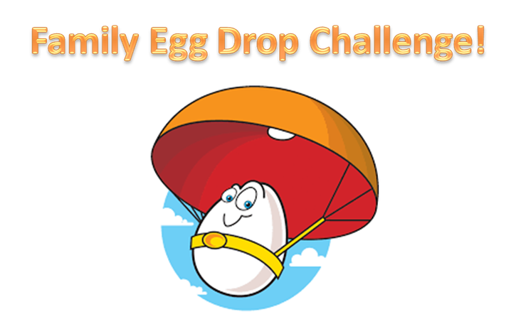 Family Egg Drop Challenge !