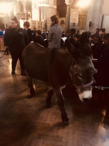Starring 'Neddy' the donkey!