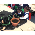 Planting our seeds.