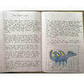 Wow! Evie's fab dragon story