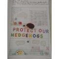 Samuel's hedgehog poster