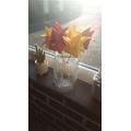 Freddie's origami flowers