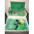 Life cycle of a frog  Sienna Y2