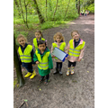 senses walk - what could they hear, touch, see, taste and smell when  walking in the woods