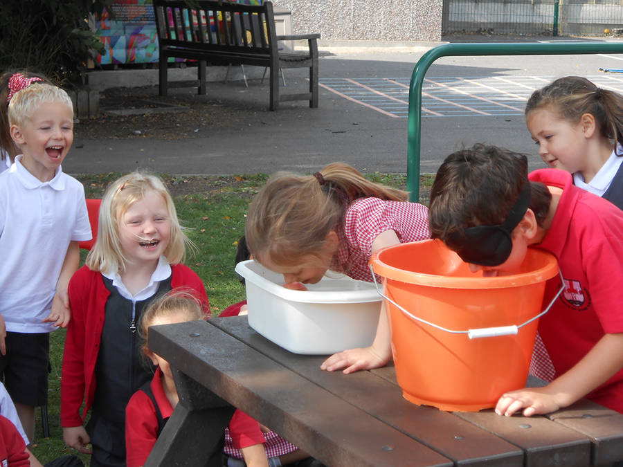 Blindfolded apple bobbing in RE...
