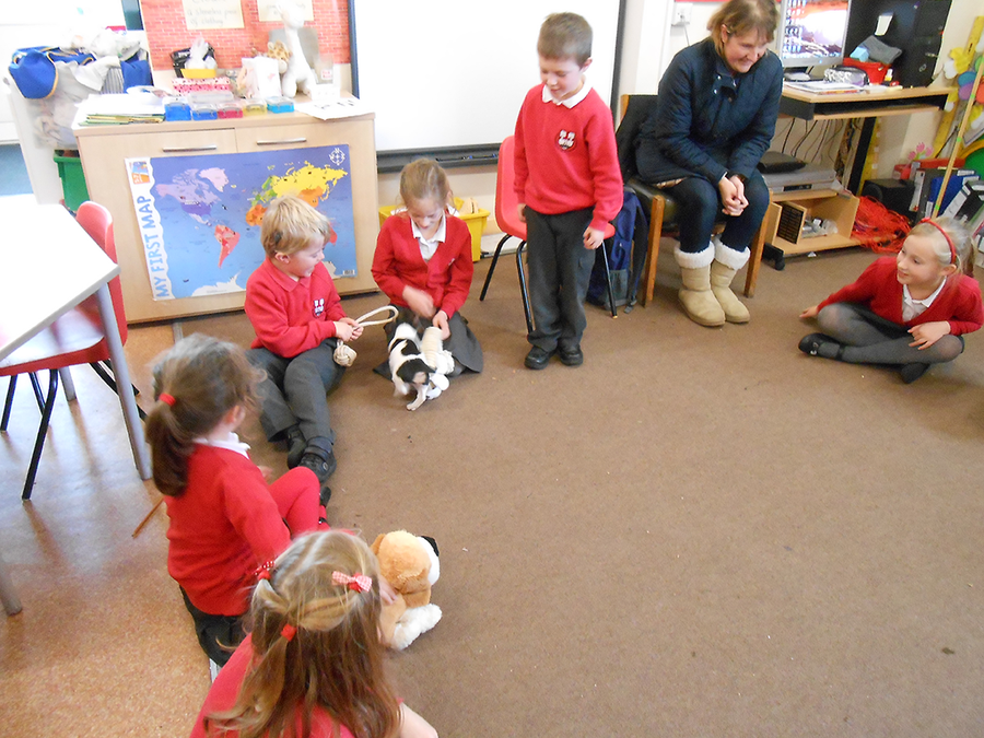 A visit from Holly the puppy