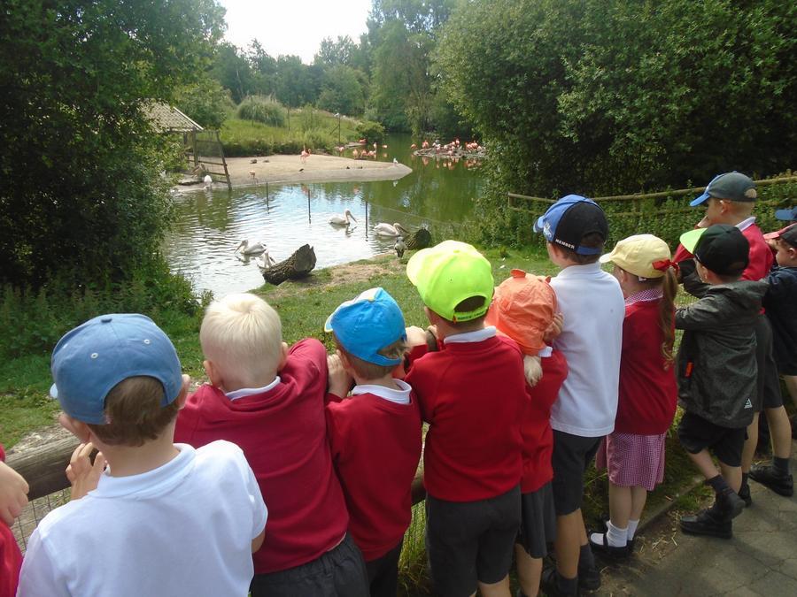 We went to Blackpool zoo