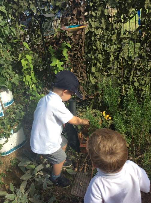 Developing our gross motor skills