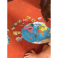 Sam completed a jigsaw and added the animals on to