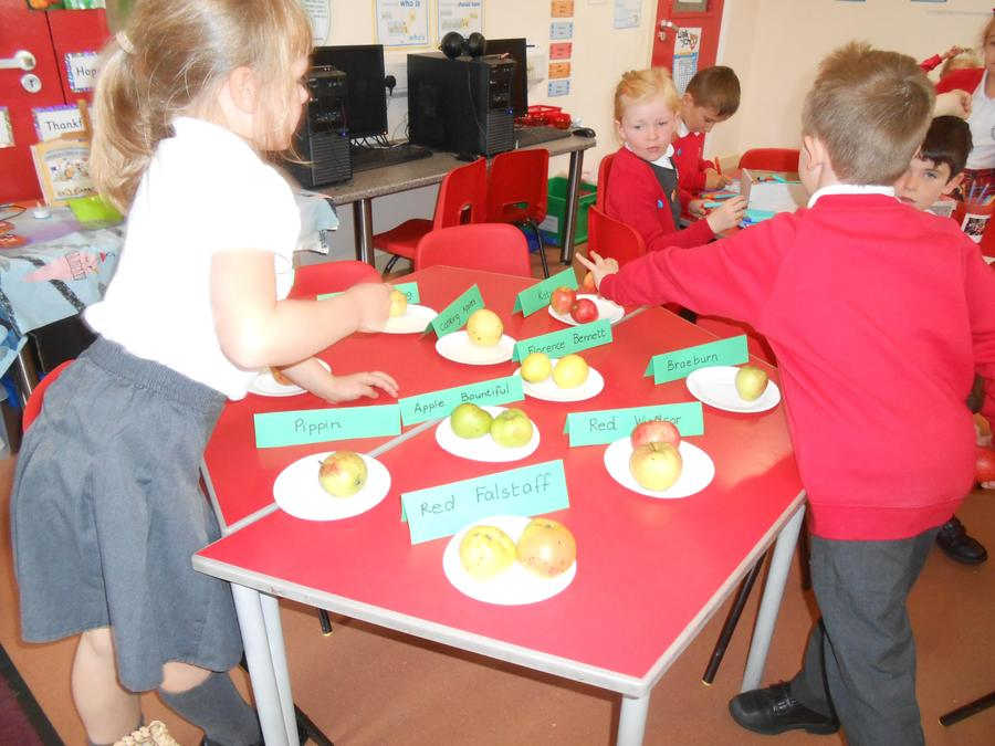 Tasting different English apples in R.E