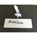 Amelia - Cherry Class Winner