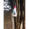 Edward's bird feeder