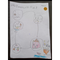 An information map about tigers by Molly