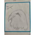 Mia's bird