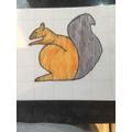 Edward's squirrel