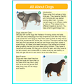 Dogs by Aadam