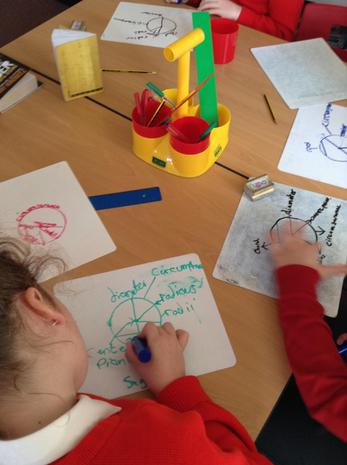 Team teaching the properties of circles in Maths