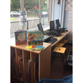 Our reading corner filled with exciting books!