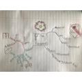 Mind Map of Tudor Crime & Punishment by Sammy Y5