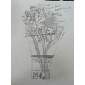 Beautiful vase of flowers drawn by Violet in Year3
