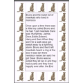 A meerkat story by Bruno in Year 1