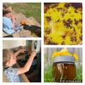 Archie in EYFS making homemade dandelion honey