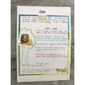 Facts about Lions by Lily R in Year 2