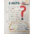 Facts about George Stephenson by Amelia in Y2