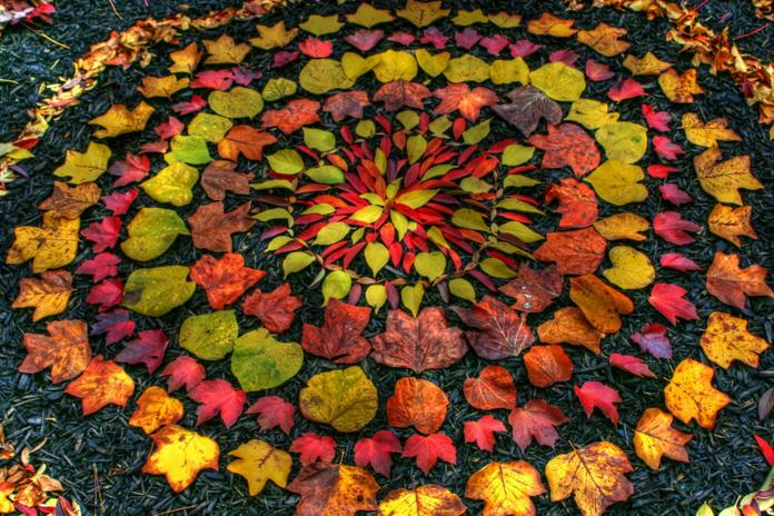 An example of work by Andy Goldsworthy