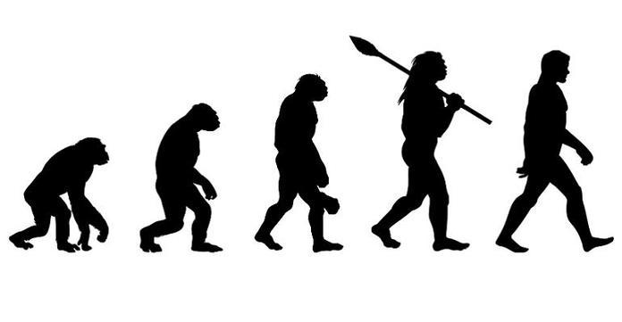 Evoluiton and Inheritance