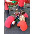 We showed our values of unity by planting together