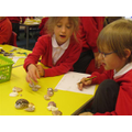 Maths investigations