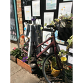 We recycled tins and an old bike!