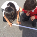 Using Wisdom to measure accurately independently