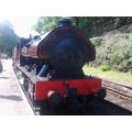 Steam train time!!